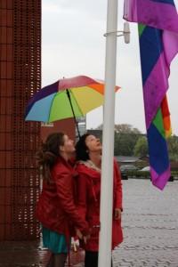 meeuwissehijsteregenboogvlag
